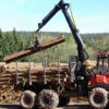 log_sawmills_thumb